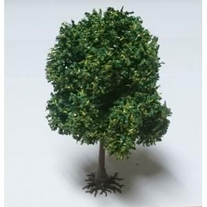 1 PLATANE 13 cm